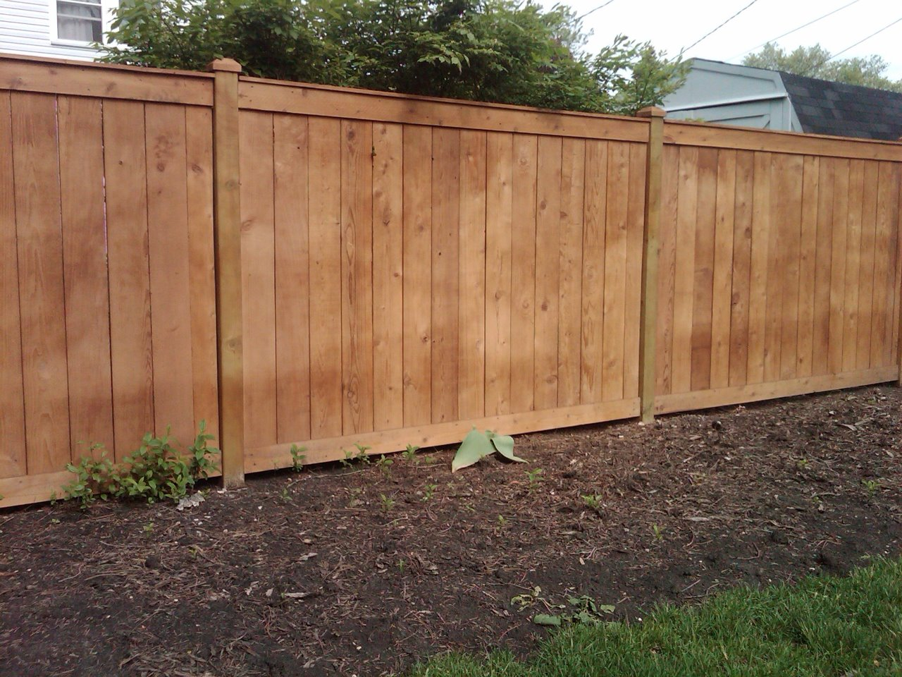 6 Traditional Outside View Cedar Fence Cardinal Fence